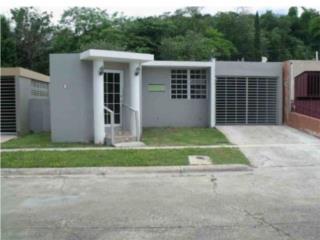 Las Carolinas, Caguas, Casa