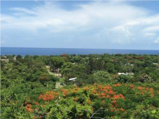 RAMEY BASE AREA, OCEAN VIEW, REDUCED !