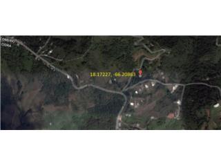 Bo. Rabanal Hermoso Solar 1,490 m2