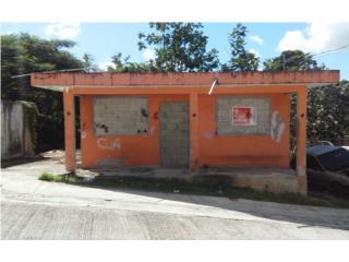 Com. Lopez Cases 257 Bo. Guaraguao