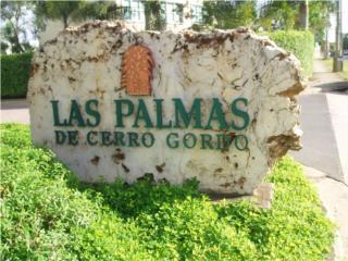 LAS PALMAS DE CERRO GORDO / VARIAS LLAME YA!