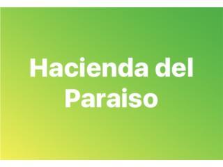 Hacienda del Paraiso, 3/2, 1000mc