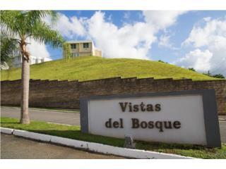 URB. BOSQUE DE LOS PINOS, BAYAMON