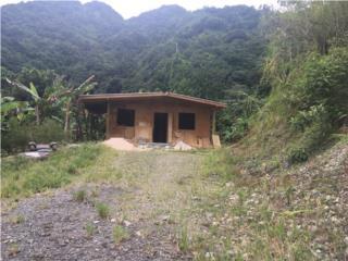 Cabaña nueva, dos cuerdas sembradas.