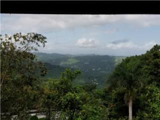 Hacienda Luna Llena -Excelente Vista