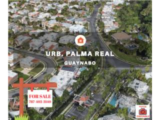 PALMA REAL - REPO EN LIQUIDACION