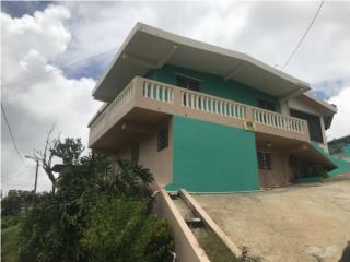 BORINQUEN ATRAVESADA, CAGUAS