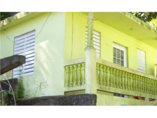 125 Calle 1 Sector Palenque Bo. Manatí Abajo