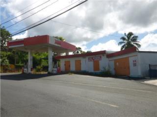 Toro Negro Puerto Rico