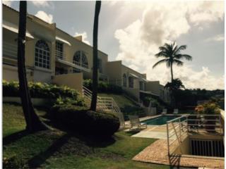Harbour Puerto Rico