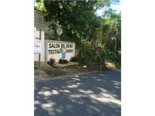 CAROLINA GOLDEN VALLEY BARRIO CACAO 3-1 49000