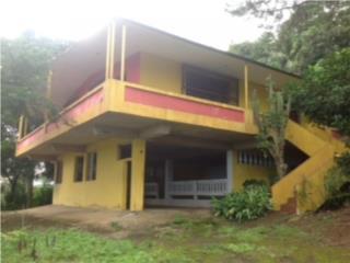 Bo. Rio Cañas, Caguas