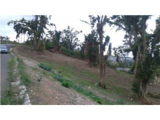 Quintas de Altamira(Vista panorámica)