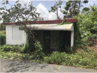 SUBASTA San Lorenzo,Bo. Roosevelt Calle 7