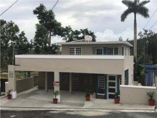Tomas de Castro, Caguas - ¡REMODELADA!