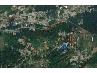 Vacant Land - State Road PR-2, Arecibo
