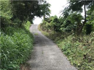 Hoconuco Alto carr 361 km 8.2 int