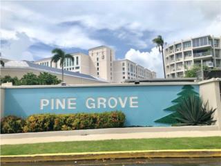 COND. PINE GROVE -  EXCELENTE CONDOMINIO
