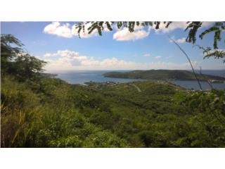 Mount Resaca Half Acre Lot