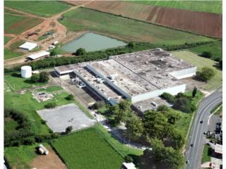 Guayama Industrial - Hurricane Property SALE