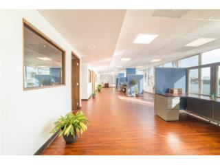 Condado Astor Office Space - FOR SALE/LEASE