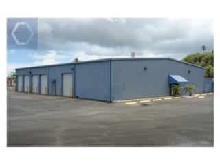 Bayamón Commercial/Light Industrial Property