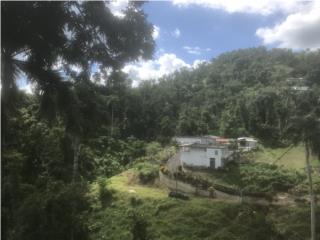 2 Casas Remodeladas! 2.75 Cuerdas Piscina Vista