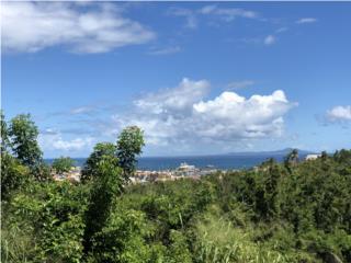 Palmas Del Mar, Land, Ocean View, Port Road 10