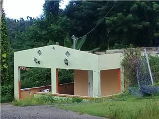 PAJONAL AFUERA