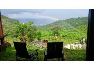 Paraiso en Cayey! un lote hermoso!