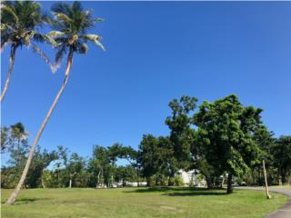 SPECTACULAR LOT FOR SALE - RITZ DORADO BEACH