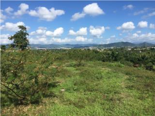 129 cuerdas de terreno en Caguas