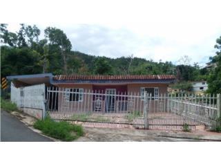 Bo. Turabo Lote 1 Carr. 1 Km 40.3 Interior