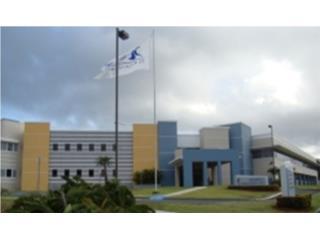 Dr. Pedro Blanco Medical Tower I Suite 309