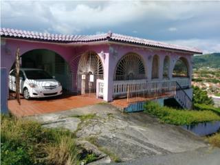 Bo. Hato, San Lorenzo. Caguas, P.R.