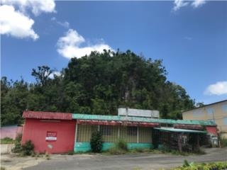 Bo. Sabana Hoyos, Arecibo
