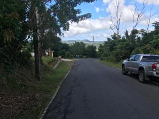 Borinquen, Caguas