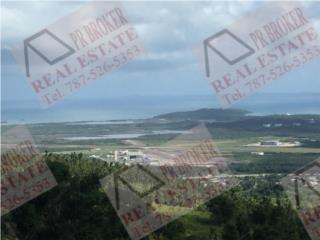 Urb Quintas de Ceiba 3.10 cuerdas financiamiento