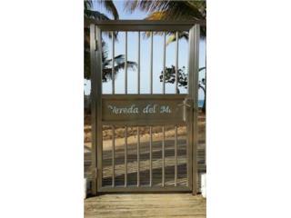 Vereda del Mar, 2.2,Optioned!