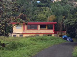 Beatriz:lot G5 St RD 1 Km 45  8, Caguas OPCIONADA