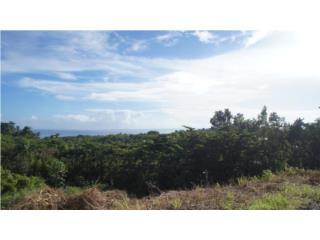Bo. Puntas Ocean View Lot
