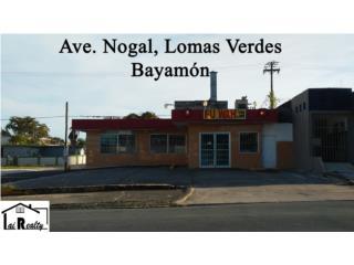 Lomas Verdes -  Ave. Nogal de Esquina, 9 pkgs