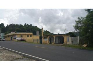 Bo. Beatriz, Cayey