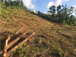 Terreno en Mabu