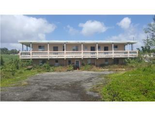 Bo. Ceiba Sur