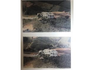 Ganga!Palmarito,vista panoramica,787-786-1687