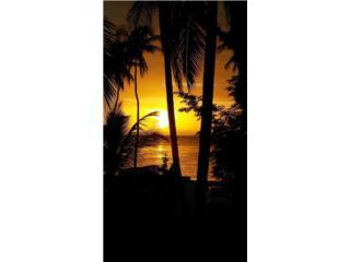 Bahia Serena I Ocean View