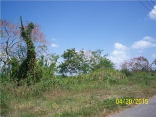 Lot 3 Bahia Industrial, terreno con 2.37 cds