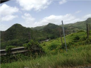 Carr. 142 Km. 24.4 Int. Haciendas de Dorado