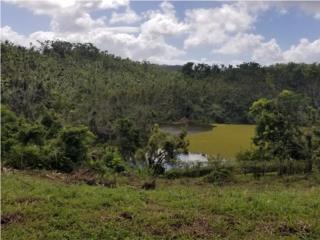 Villas del Lago -Vista a Lago Curias rebajada !!!!